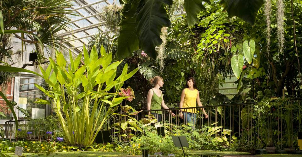 Botanischer Garten Jena, Park, Universität Jena