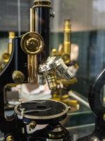 Jena_Optisches Museum_Mikroskop_JenaKultur_A.Hub