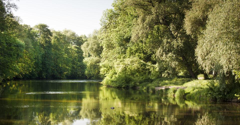 Jena, Paradies, Wehr, Paradiespark, Park, Saale
