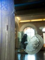 Phyletisches Museum, Abstammungslehre, Haeckel