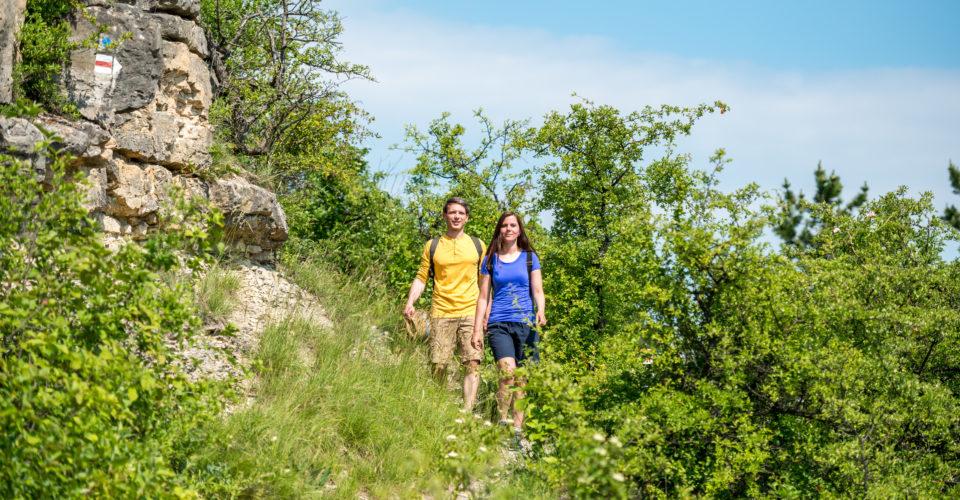 Wandern Jena, Sonnenberge, Saalehorizontale, Trailrunningwege in den Kernbergen