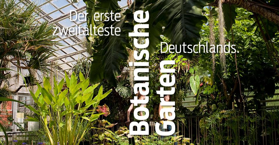 Jena_Superlative_Botanischer_Garten